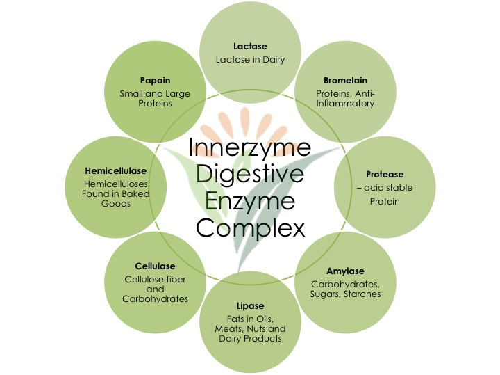 Digestive-Enzyme-Complex