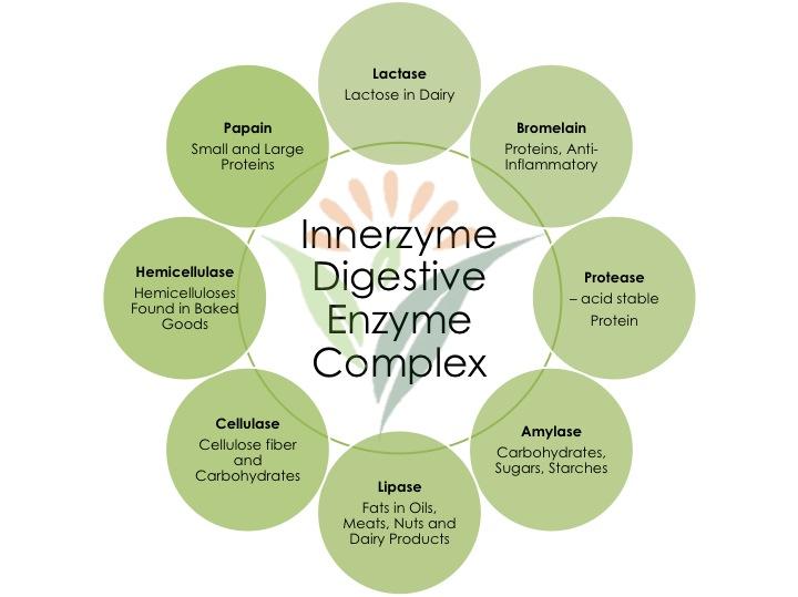 Digestive Enzyme Complex Innerzyme